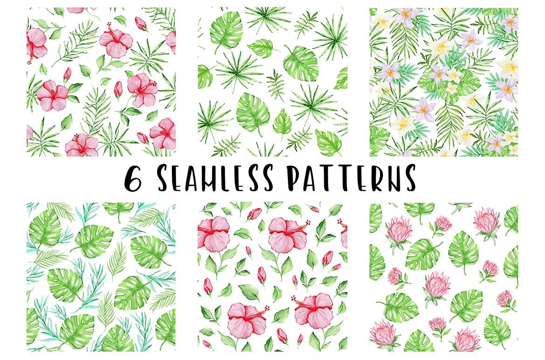 36套手绘热带水彩花卉元素装饰图案Tropical Summer Design Kit插图(2)