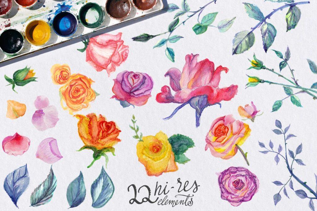 植物花卉水彩相框装饰图案下载Watercolor Roses DIY pack插图(1)