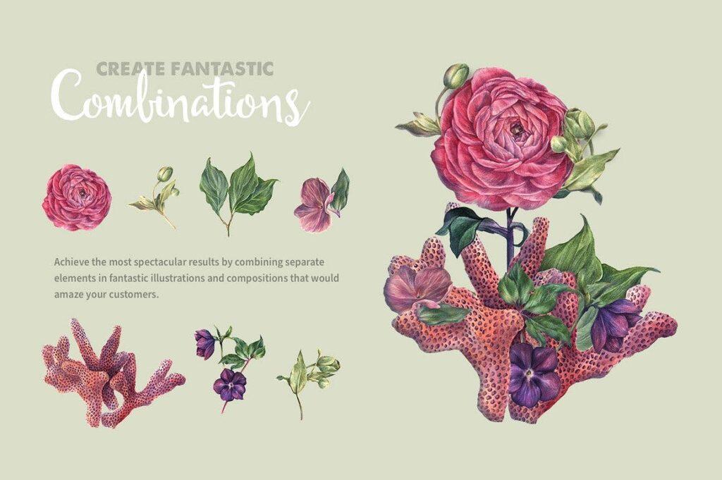 50套华丽珊瑚水彩插图装饰图案Watercolor Wonders Graphic Kit插图(2)