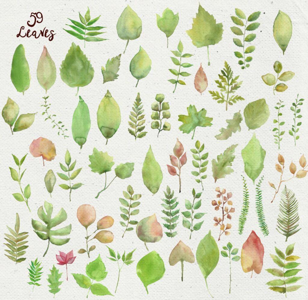 水彩花朵树叶和花环主题元素装饰图案Watercolor Wreathes and Bouquets插图(2)