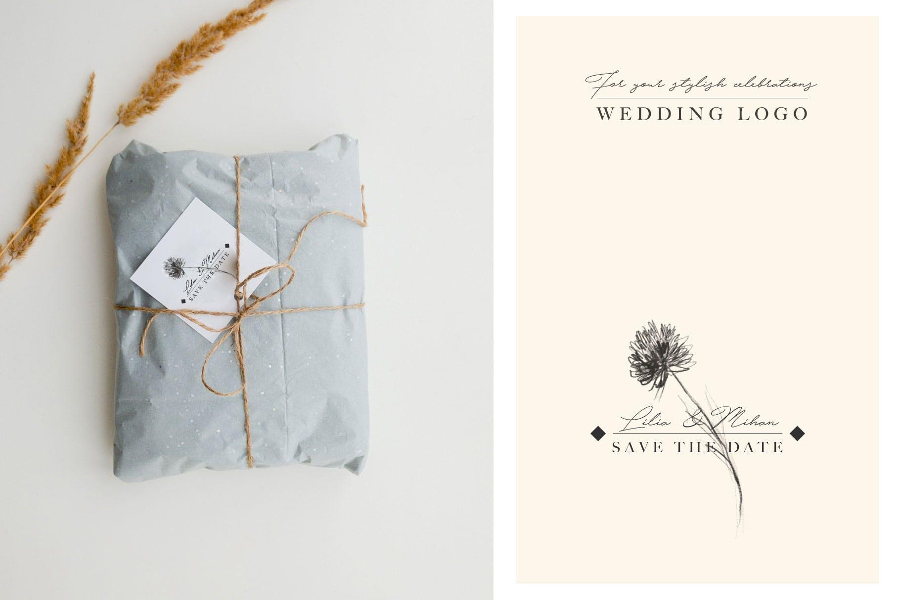 优秀的石墨仿铅笔图形组图案花纹素材Wedding Graphic Logo Pencil Flower插图(2)