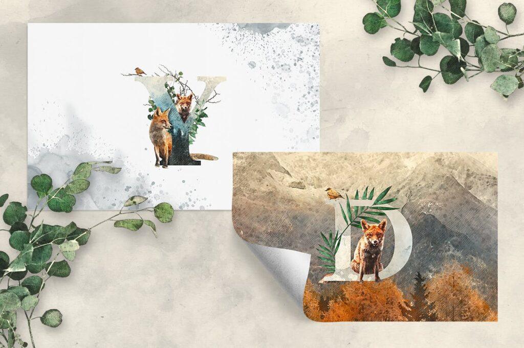 自然和森林主题元素装饰图案创意设计Forest Illustrations Graphics Kit插图(3)
