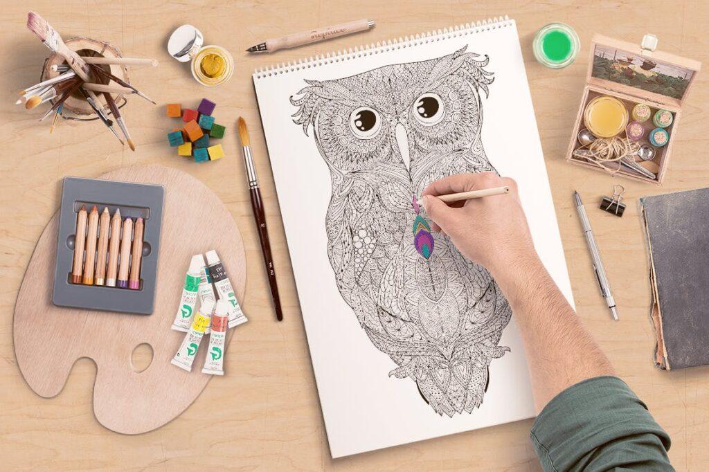 精致手绘猫头鹰插图装饰图案纹理Owl Illustration Black Colorful插图(2)