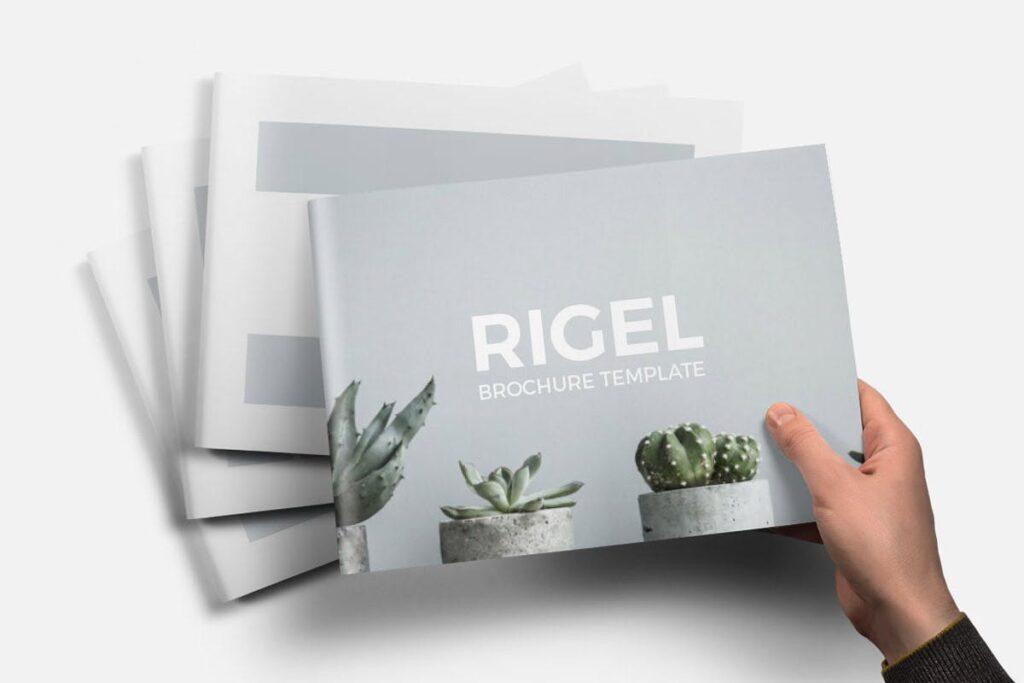 简约绿植居家生活类画册模板Rigel Brochure Template插图(3)