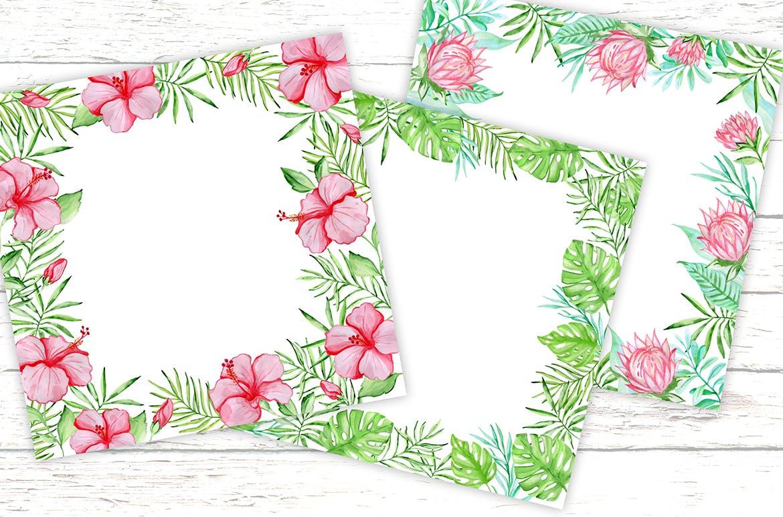 36套手绘热带水彩花卉元素装饰图案Tropical Summer Design Kit插图(3)