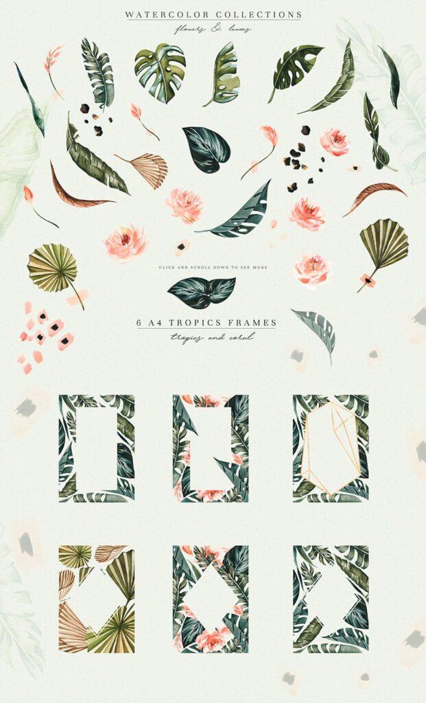 明亮色彩热带绿色植物结合婚礼装饰图案花纹Tropics & Coral Watercolor Set插图(3)