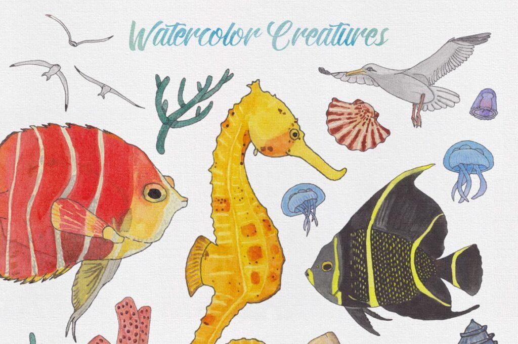 海洋生物系列主题创意图案装饰图案Watercolor Creatures vol 3插图(3)