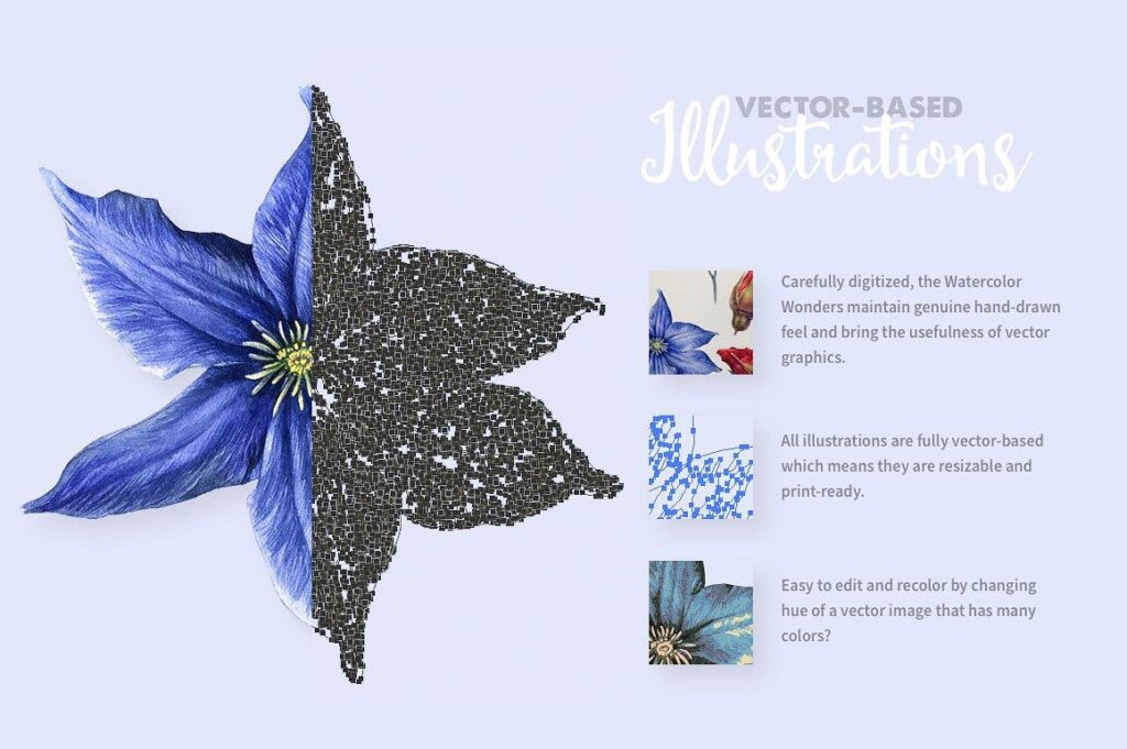 50套华丽珊瑚水彩插图装饰图案Watercolor Wonders Graphic Kit插图(3)