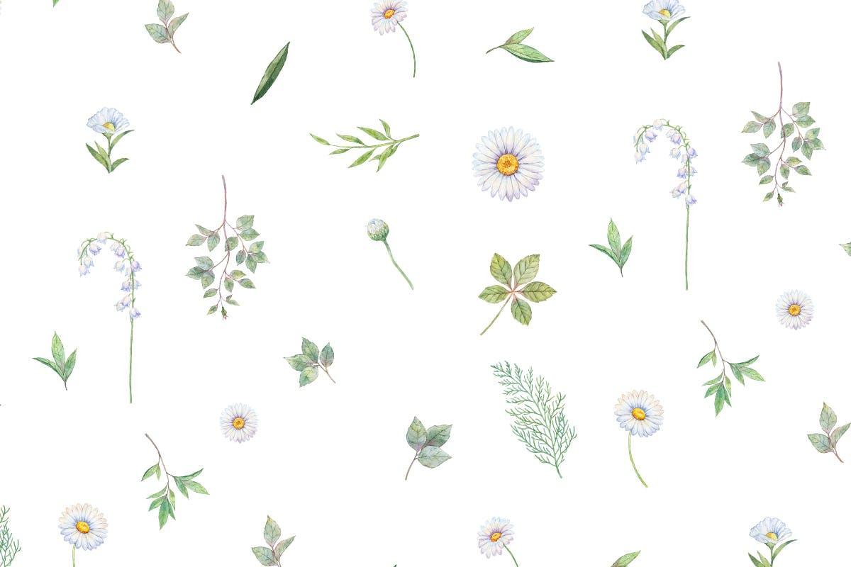手绘水彩绿植图形文件设计元素装饰图案Blush Ivory Seamless Patterns插图(3)