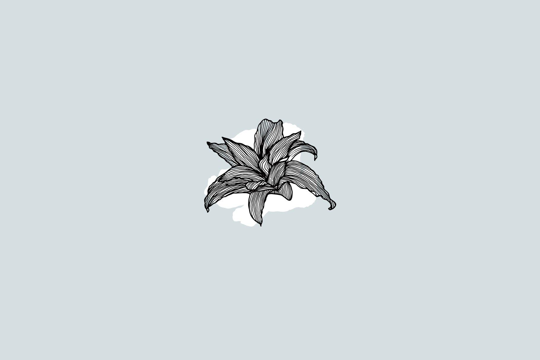 线条艺术花卉矢量图案元素Lineart Floral Patterns Elements插图(4)