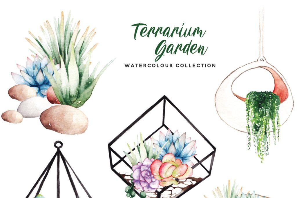 精致手绘元素企业品牌服装装饰图案花纹Succulent Terrarium Watercolor插图(4)