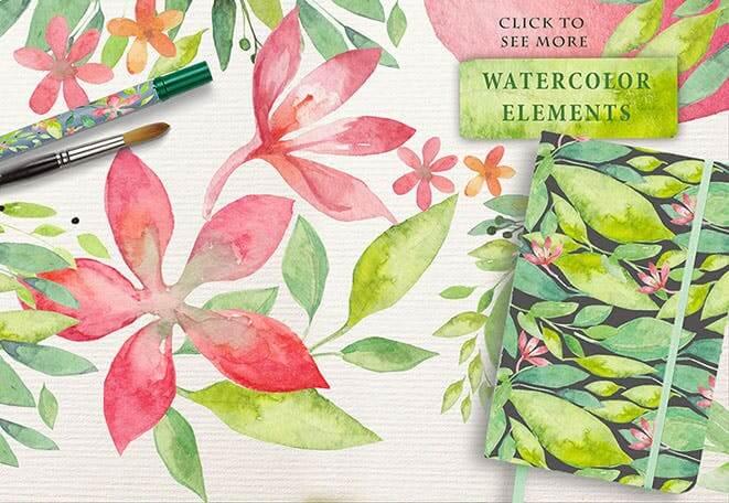 夏季素材鲜花素材装饰排列合集THE SUMMER BREEZE插图(3)