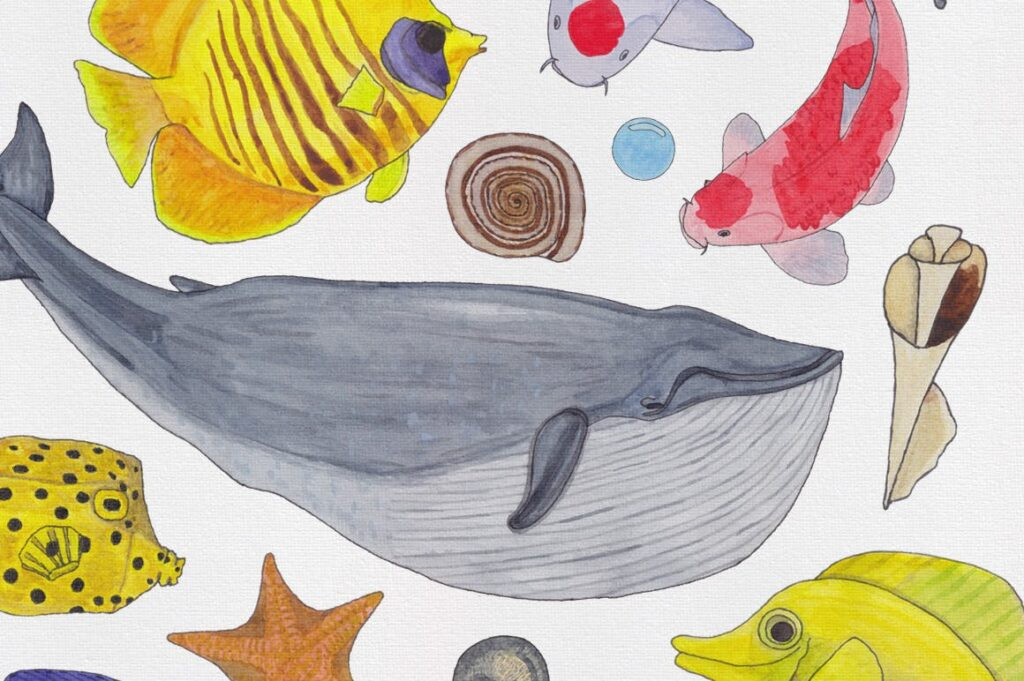 海洋生物系列主题创意图案装饰图案Watercolor Creatures vol 3插图(4)
