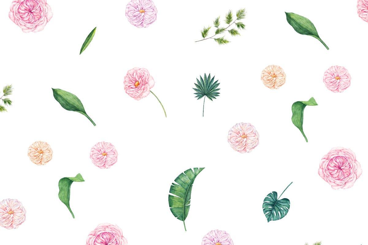 手绘水彩绿植图形文件设计元素装饰图案Blush Ivory Seamless Patterns插图(4)