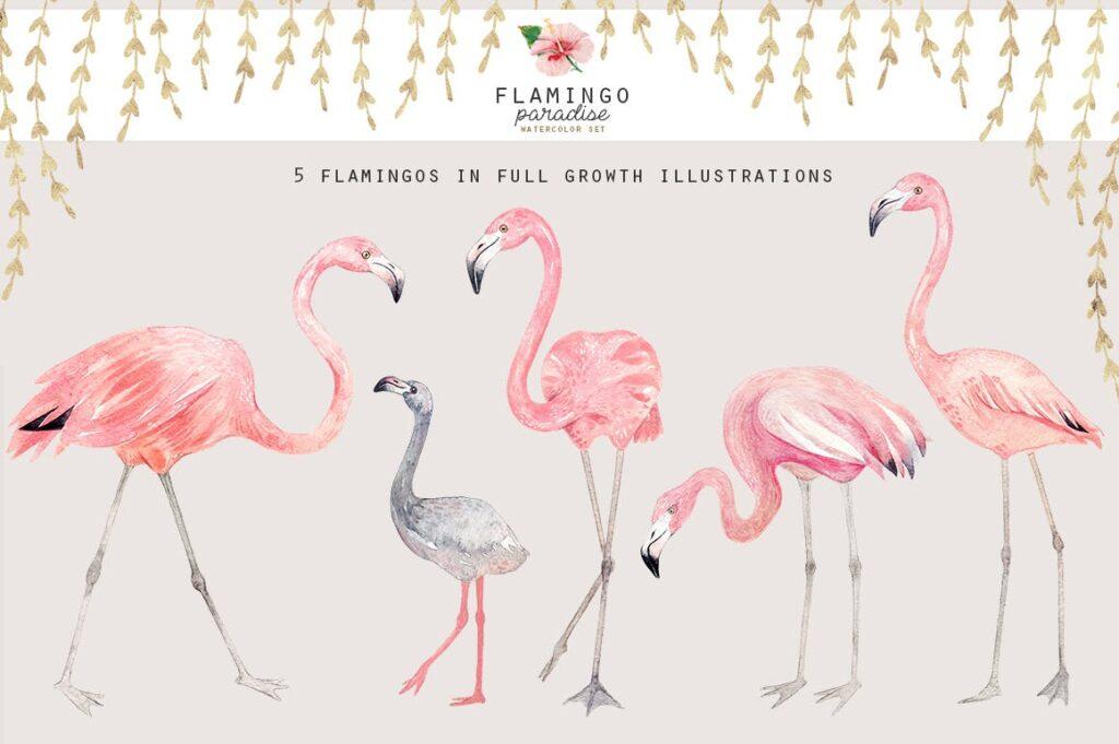 火烈鸟热带树叶和花朵主题装饰元素纹理花纹装饰图案FLAMINGO PARADISE watercolor set插图(5)