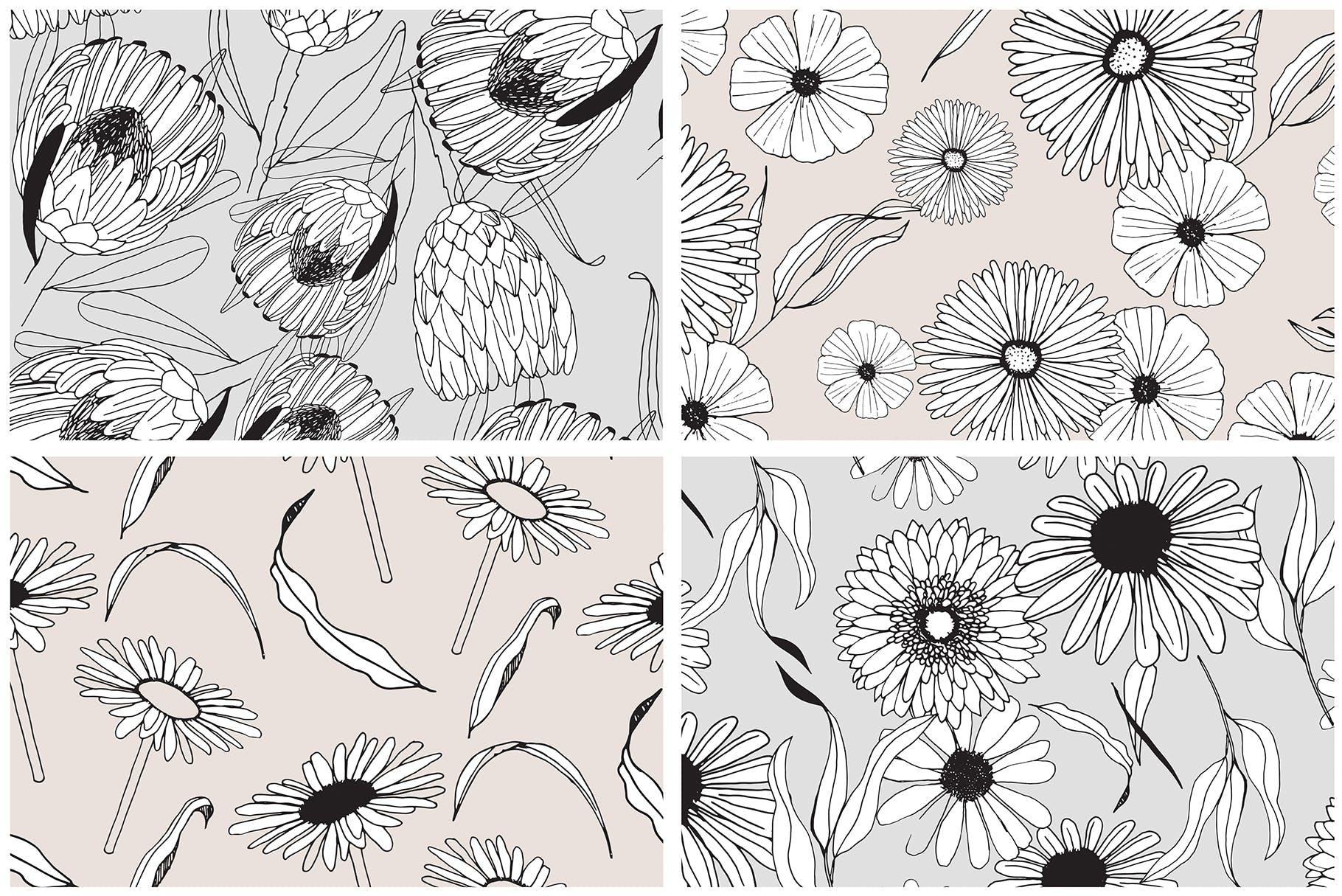 图形花卉图案装饰性元素图案花纹素材下载Graphic Flowers Patterns Elements插图(4)