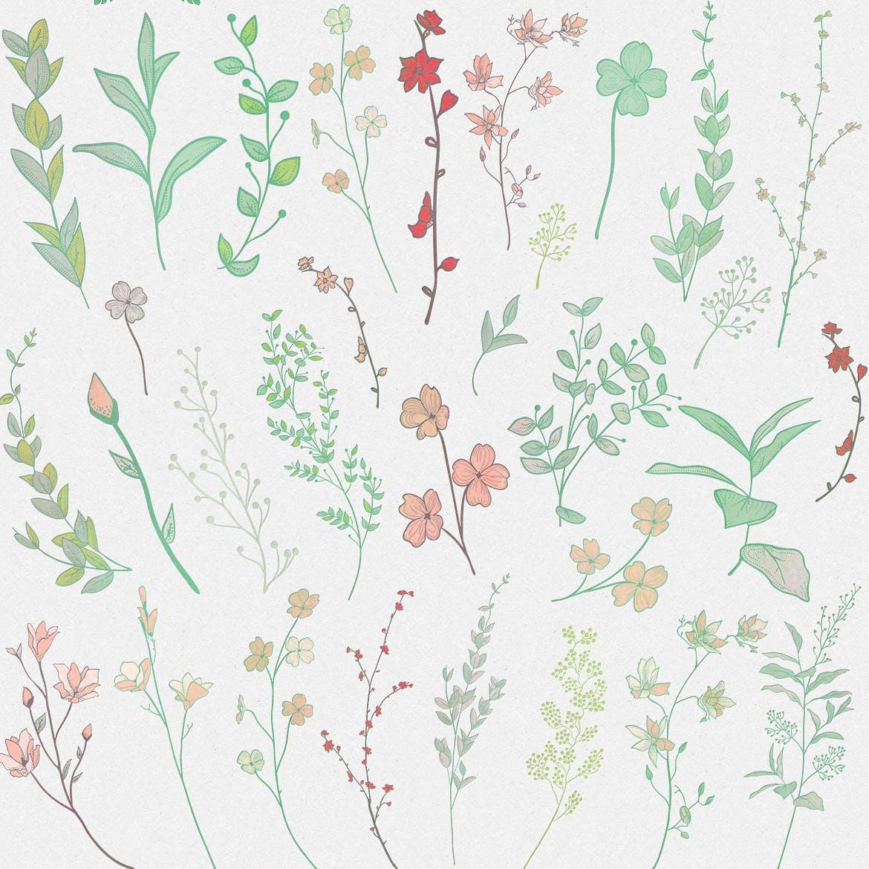 手绘乡村花卉涂鸦设计元素Greenery Collection167 Elements插图(4)