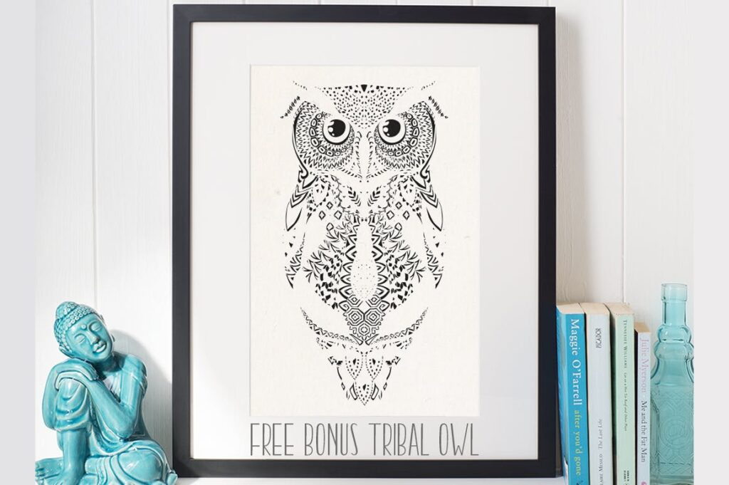 精致手绘猫头鹰插图装饰图案纹理Owl Illustration Black Colorful插图(4)