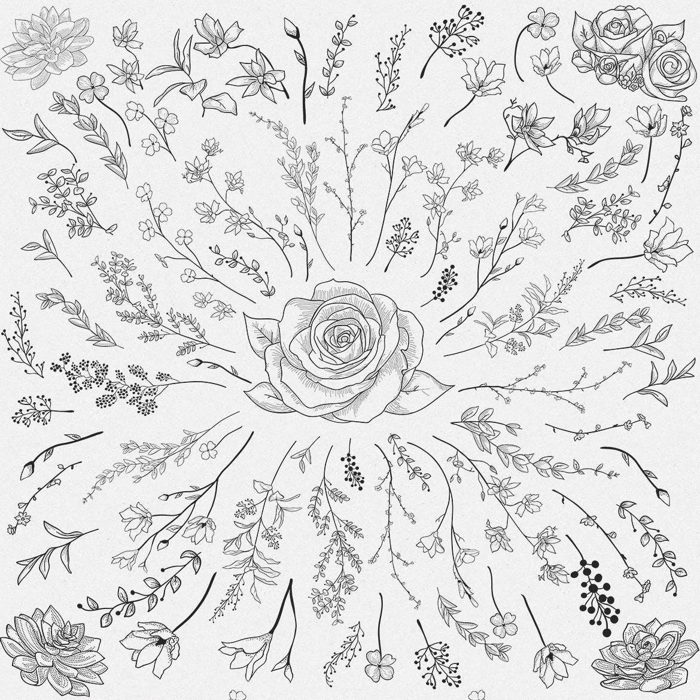 手绘乡村花卉涂鸦设计元素Greenery Collection167 Elements插图(5)
