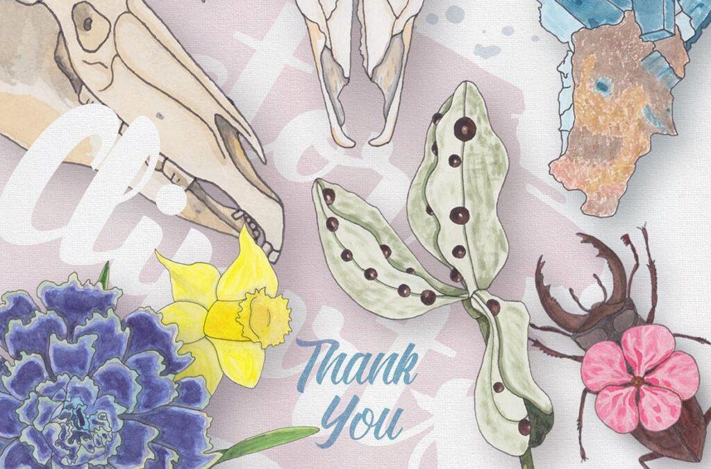 大自然生物创意图案手绘水彩装饰元素下载Watercolor Creatures vol. 1插图(6)