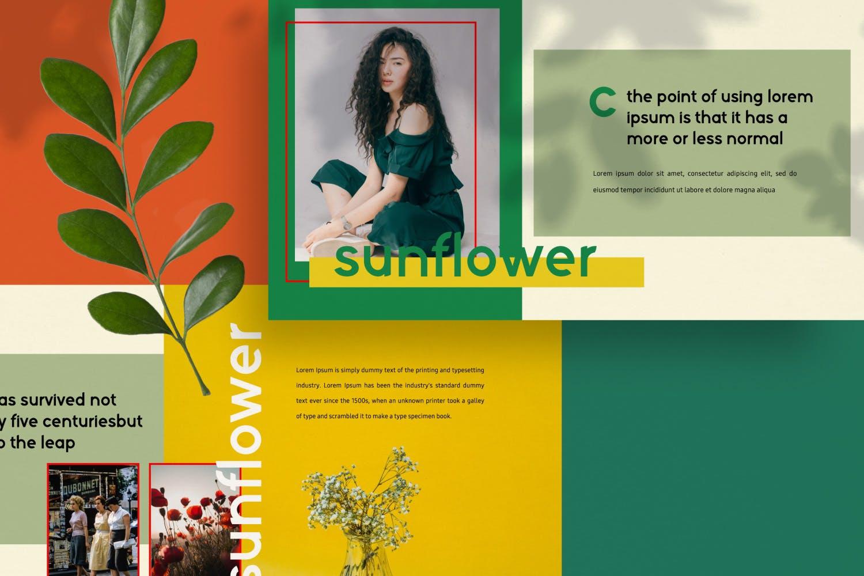 创意版式对比色风格多用途PPT幻灯片模板sunflowers keynote插图(6)