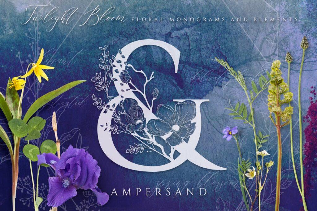 非常优雅的暮光之花系列花体字母组合Floral Monograms Elements插图(7)