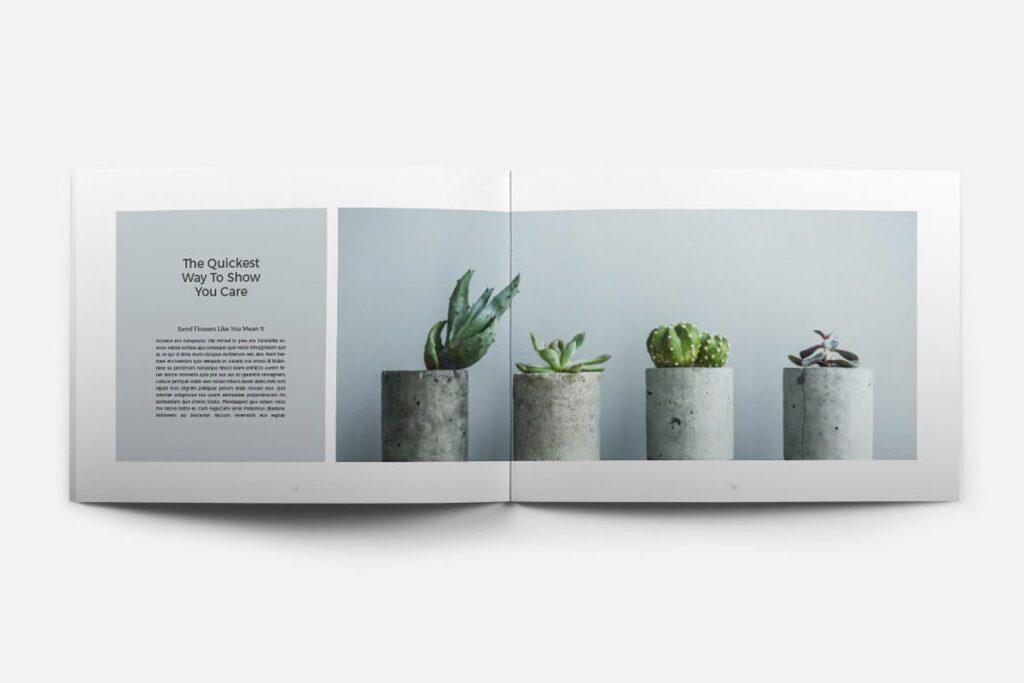 简约绿植居家生活类画册模板Rigel Brochure Template插图(7)
