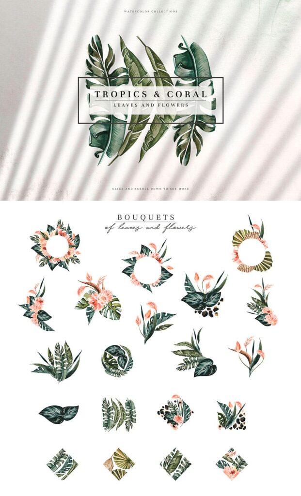 明亮色彩热带绿色植物结合婚礼装饰图案花纹Tropics & Coral Watercolor Set插图(7)