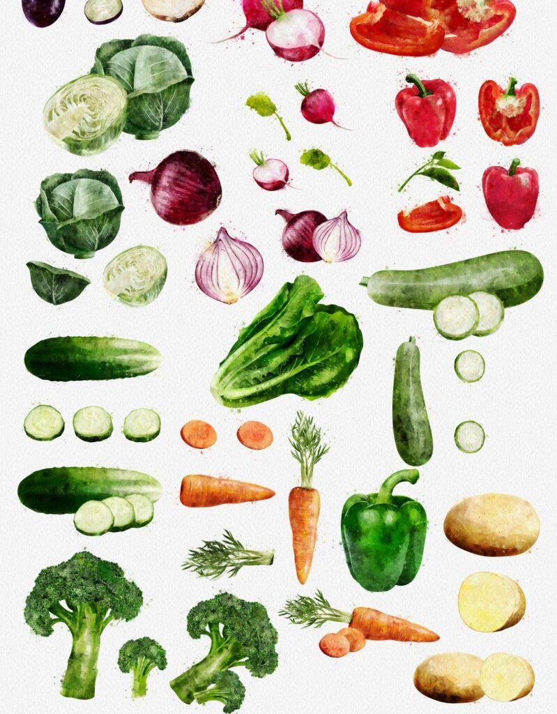水果蔬菜系列主题水彩装饰图案下载Watercolor Fruits And Vegetables插图(7)