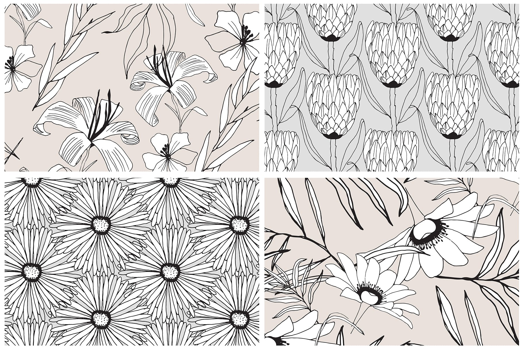 图形花卉图案装饰性元素图案花纹素材下载Graphic Flowers Patterns Elements插图(7)