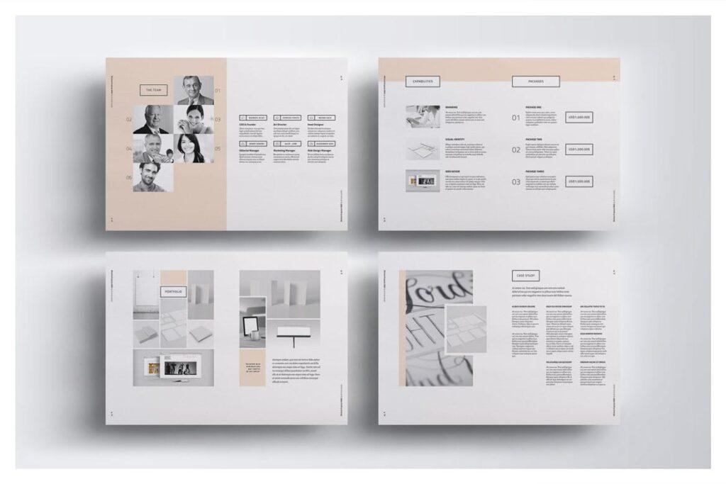 A4尺寸企业项目提案画册模板素材Proposal 005插图(4)