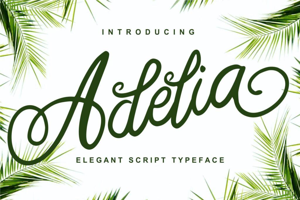 咖啡包装标题字体/文艺邀请函字体Adelia Elegant Script Typeface插图