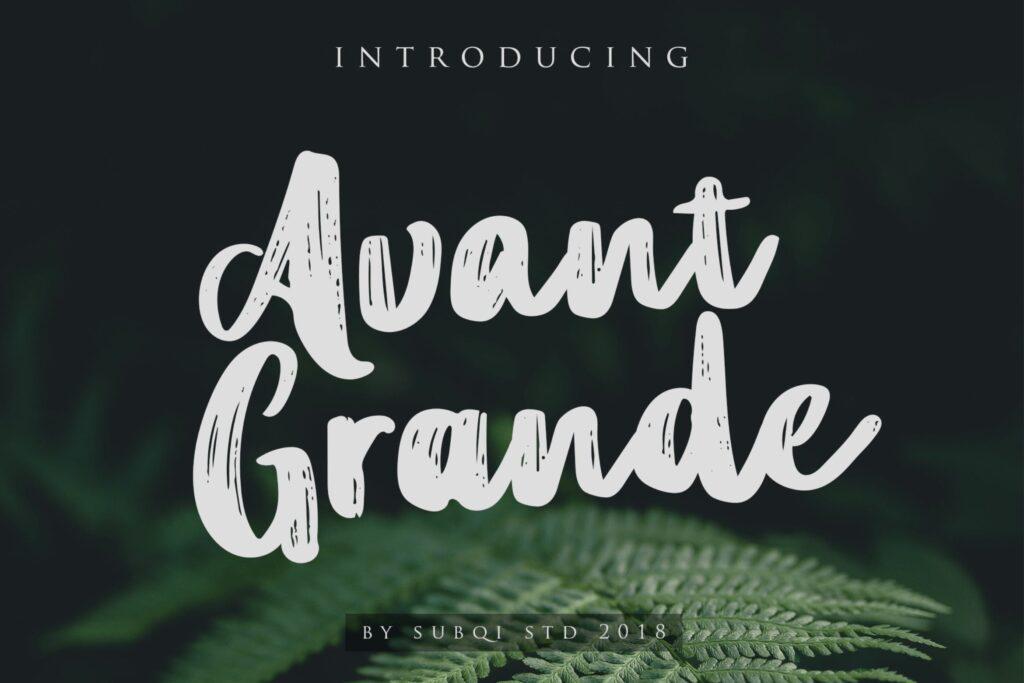 品牌包装标题字/英文无衬线字体下载Avant Grande插图