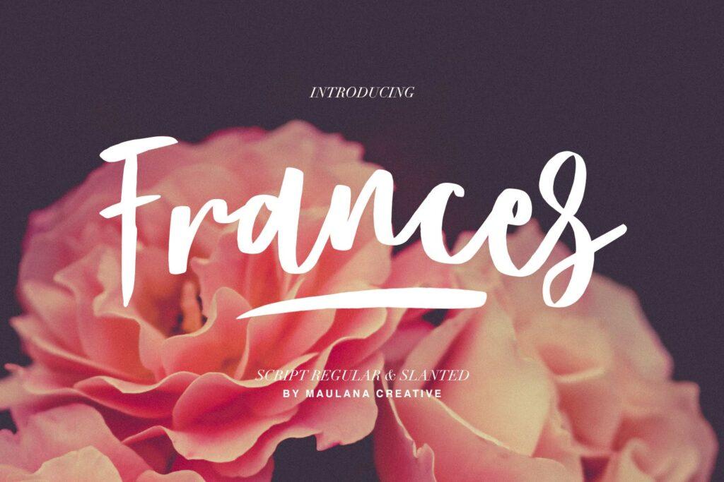 文艺浪漫主题/婚礼邀请函无衬线英文字体Frances Modern Font插图
