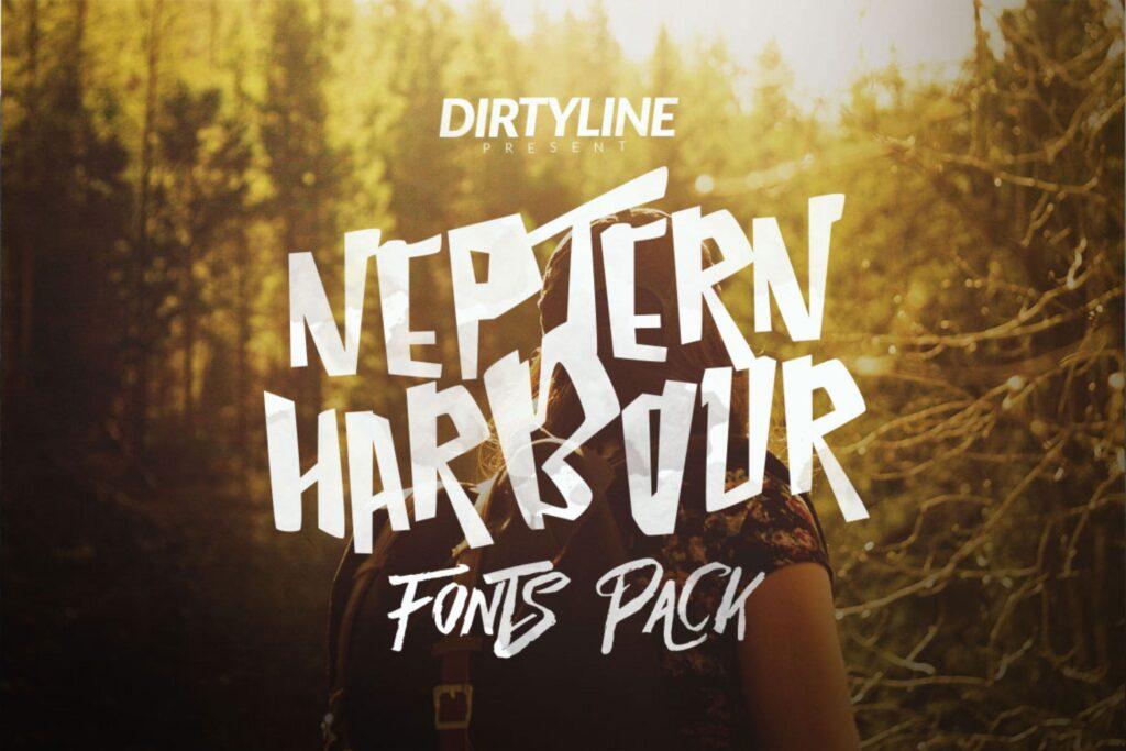 品牌包装字体/婚礼请柬邀请函英文字体下载Neptern Harbour Font Display Logotype插图