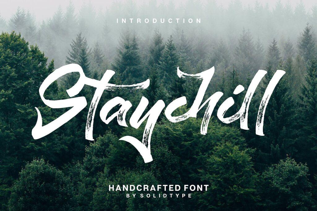 书籍标题字体/独特的纹理笔刷英文无衬线字体下载Staychill Brush Font插图