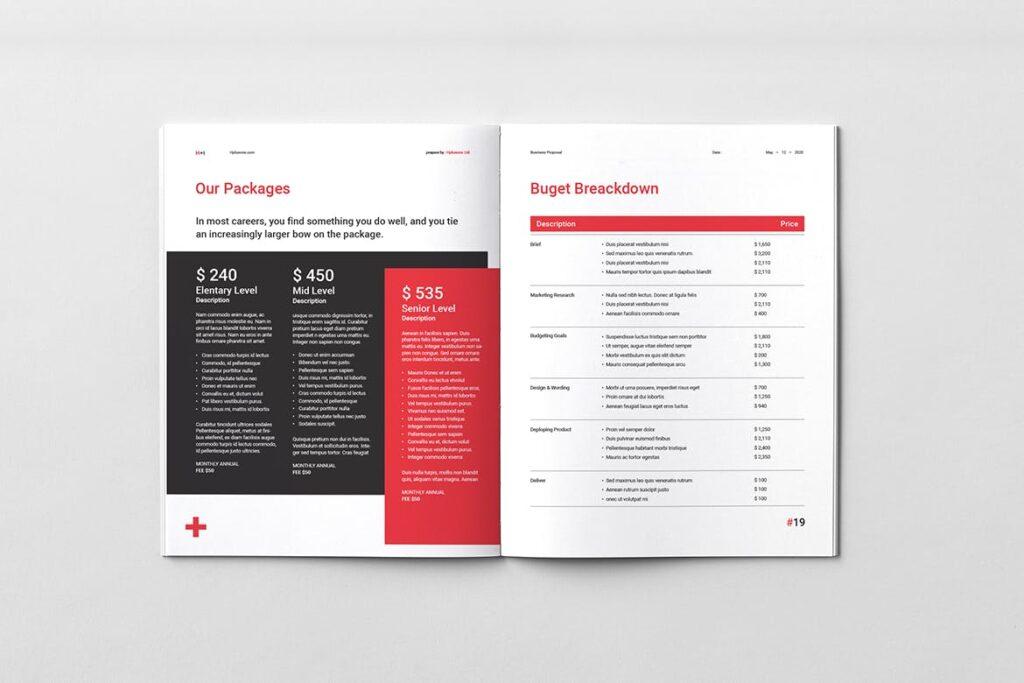 公司手册项目企划书画册模版素材Business Proposal插图(9)