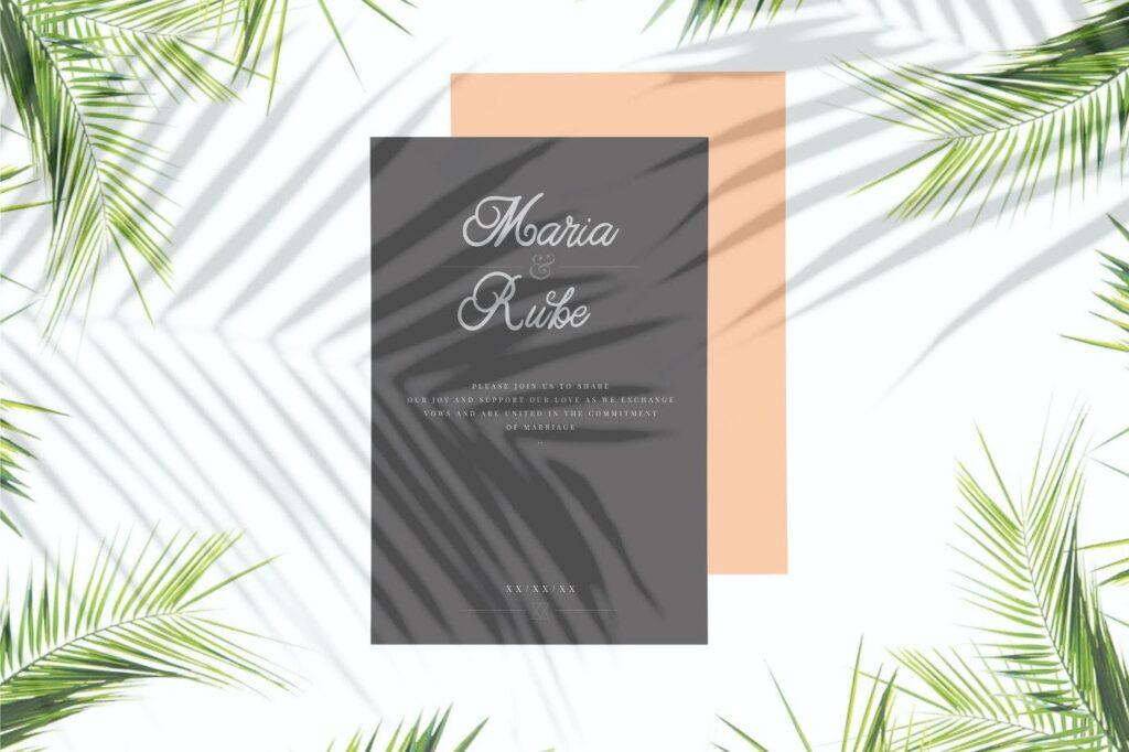 咖啡包装标题字体/文艺邀请函字体Adelia Elegant Script Typeface插图(1)