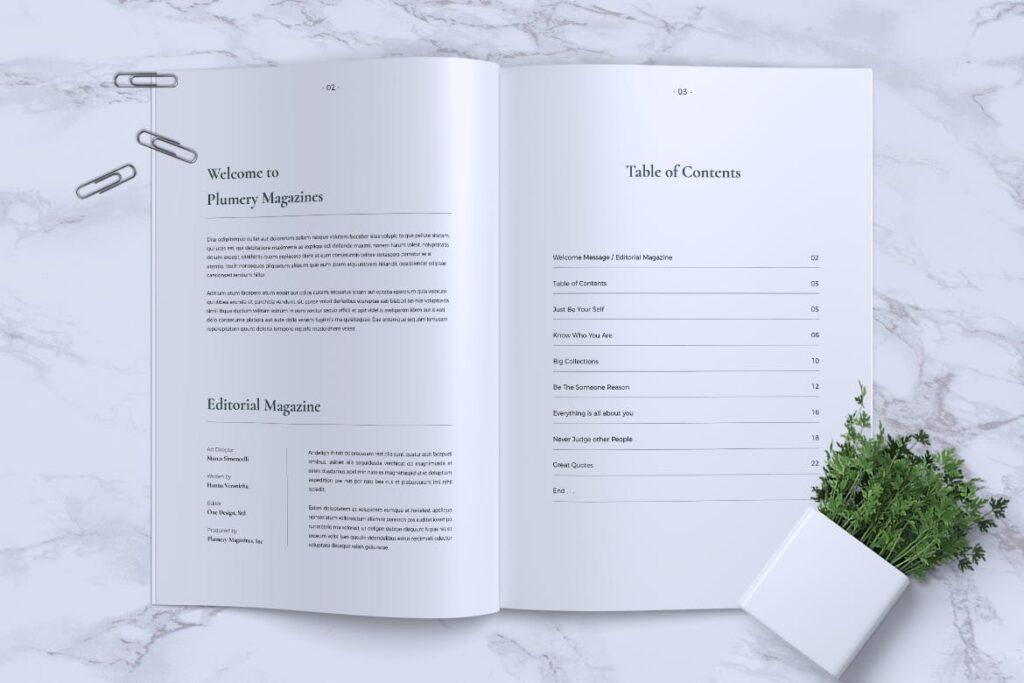 简约企业商务小册子目录/多用途画册模板PLUMERY Minimal Magazines插图(1)