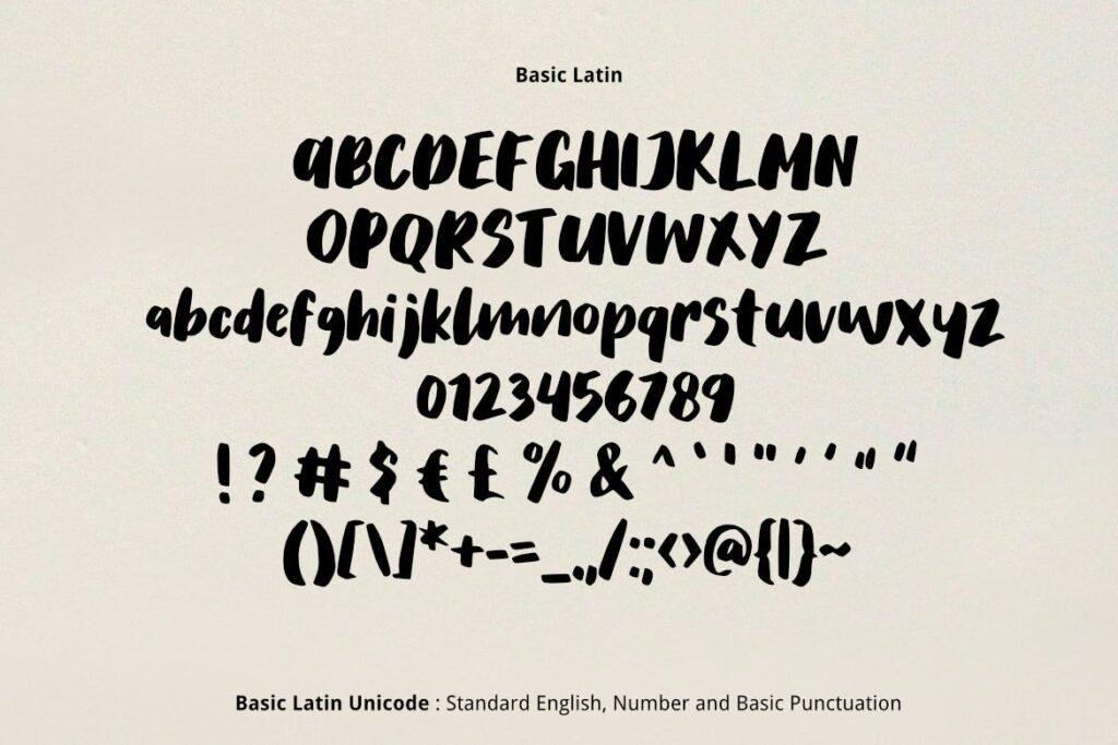 儿童书籍封面杂志手写英文无衬线字体下载Salmon Brush Font插图(1)