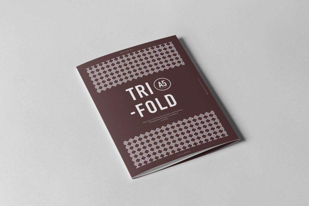 三折A5小册子模型素材模板样机下载Tri Fold A5 Brochure Mock up 2插图(1)