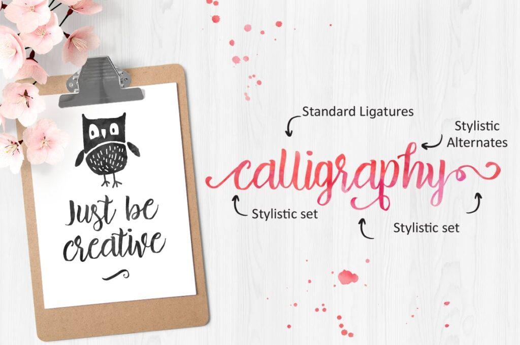 品牌包装装饰英文手写字体下载Brillia Script插图(2)