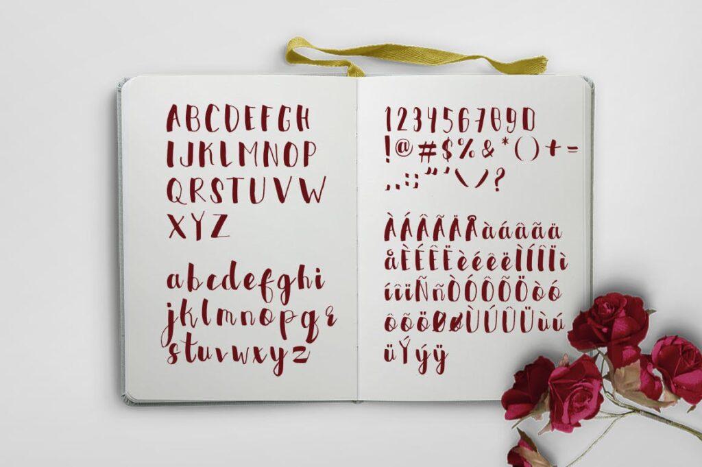 书籍/封面标题英文马克笔手写无衬线字体下载Faeriefire Typeface插图(2)