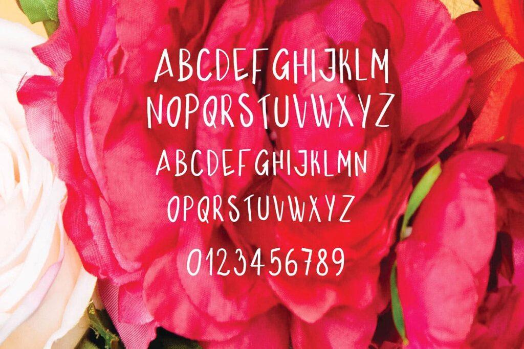 海报或t恤设计装饰手写无衬线英文字体下载Bolden插图(3)