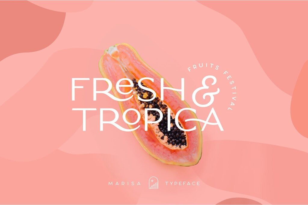 服装品牌装饰手写字体下载Classy Marisa Elegant Typeface插图(3)