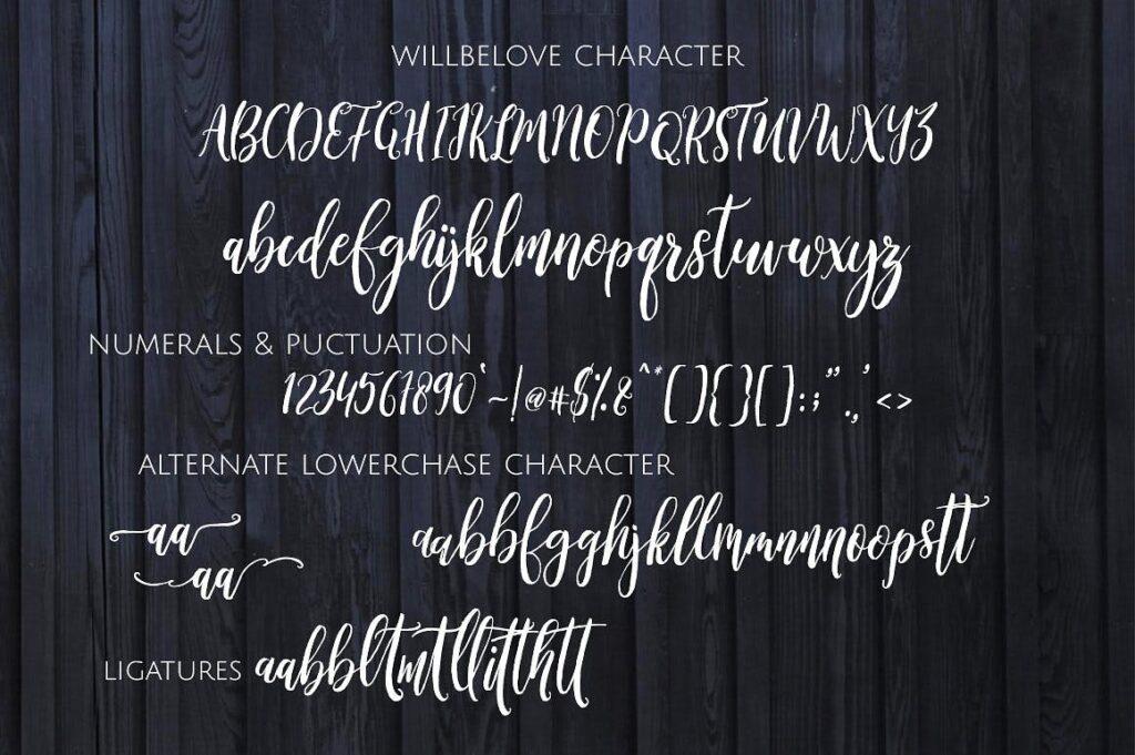 创意干笔刷无衬线英文字体下载Banshee Brush Script插图(6)
