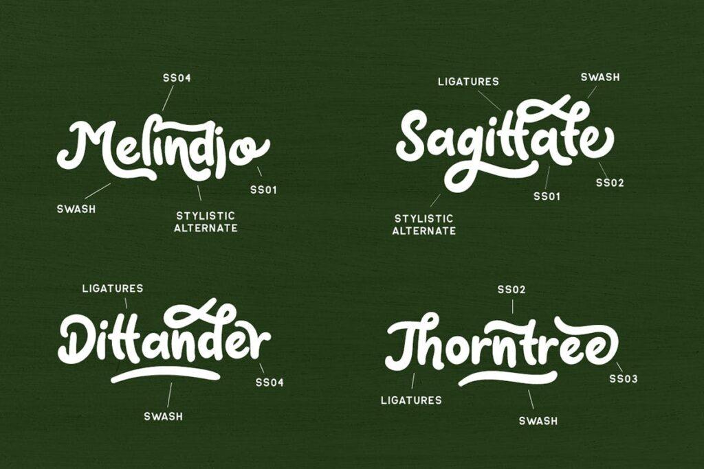 电商购物品牌海报宣传手写英文衬线字体下载Claytonia Bold Script插图(4)