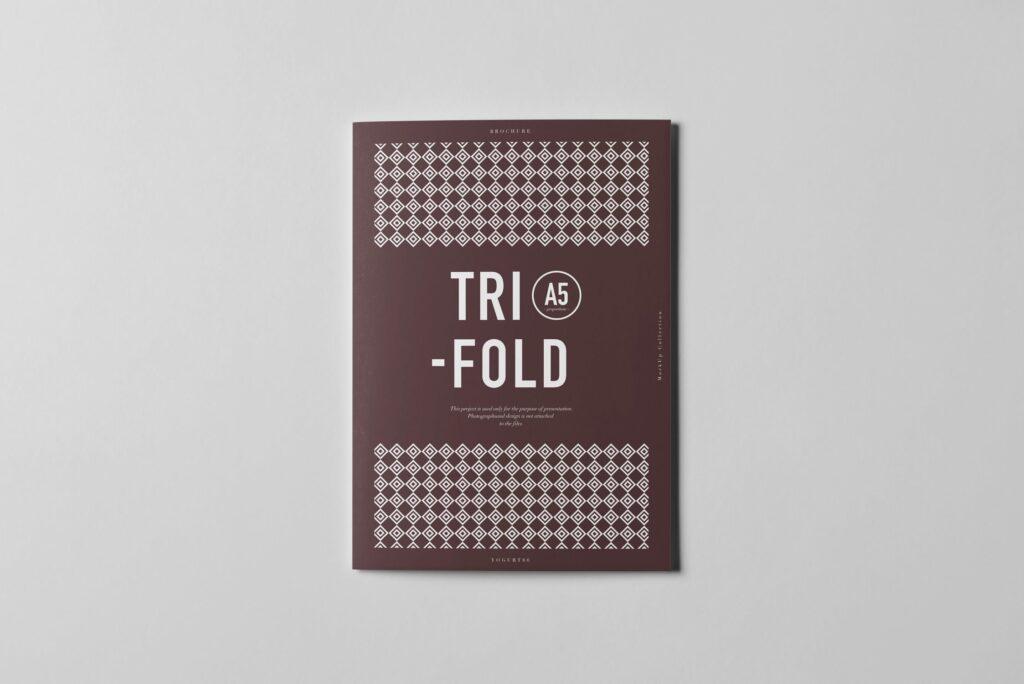 三折A5小册子模型素材模板样机下载Tri Fold A5 Brochure Mock up 2插图(5)