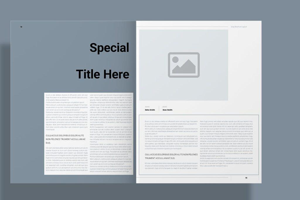 黑白经典艺术摄影画册杂志模板Gray Brochure插图(7)