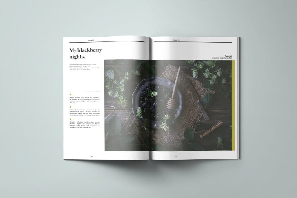 爱情夏日主题/美好生活方式杂志画册模版Love Summer Magazine Template插图(7)